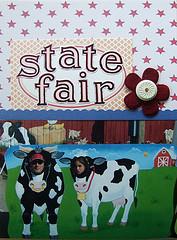 State fair mini