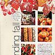 Finding Fall | Elizabeth Dillow