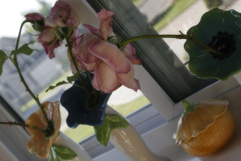 A sorensen summer 04