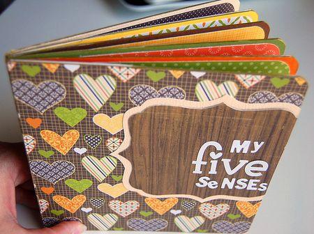 My Five Senses board book