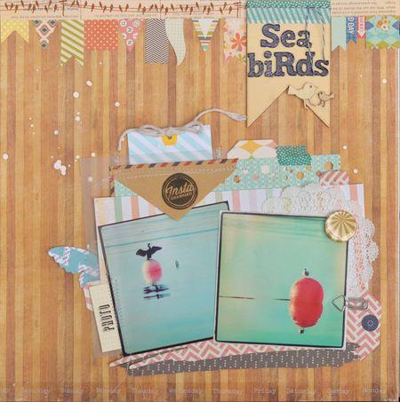 Sea birds1