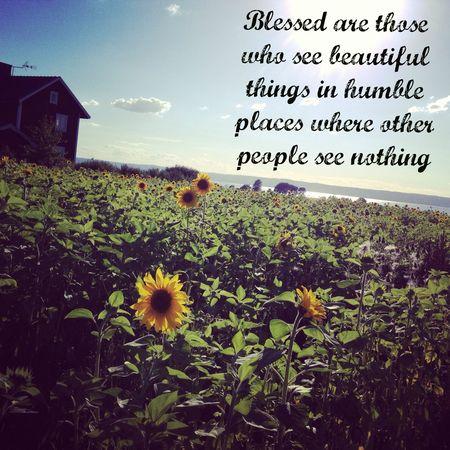 Blessedarethosewhoseebeautifulthings