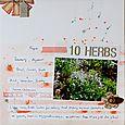 10 Herbs | Francine Clouden