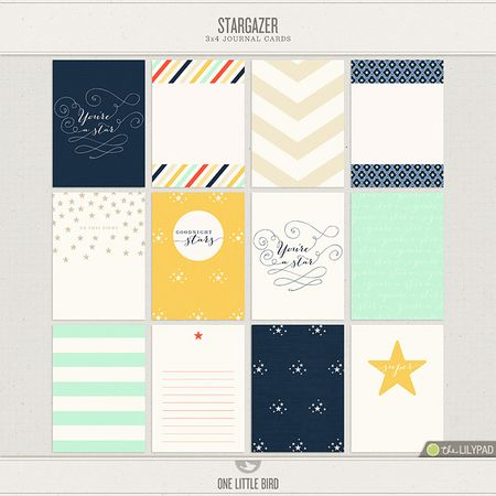 Onelittlebird-stargazer-JC-preview