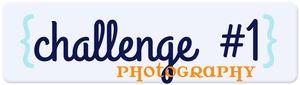 Summer_challenge_write_click_scrapbook