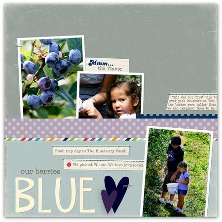 08.09.10 - berries blue ol