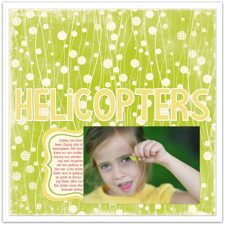 05.02.12-helicopters
