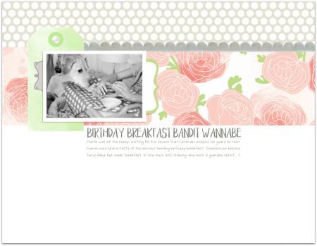 01.19.16-birthday_bandit