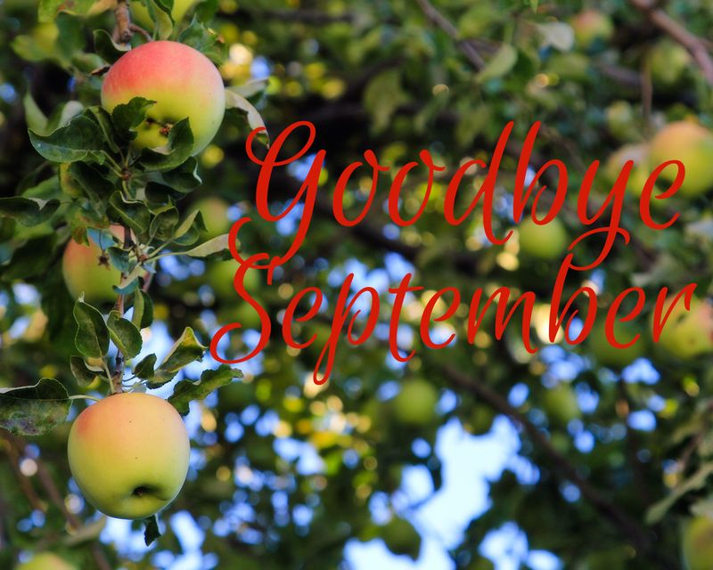 Goodbye september