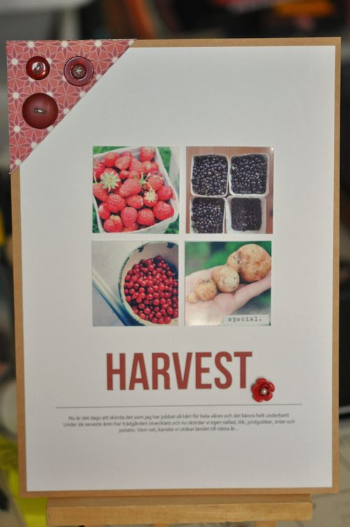 Harvest | Lisa Ottosson