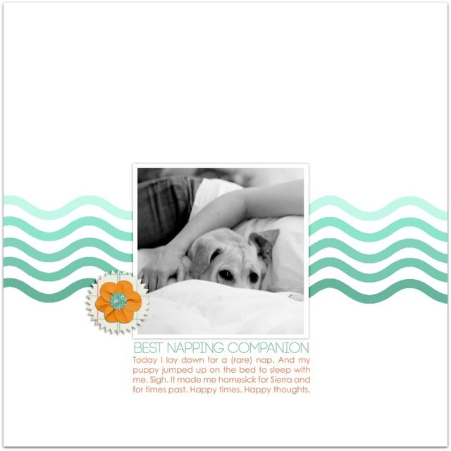 Best Napping Companion   Marnie Flores